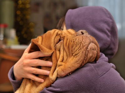 Zusammenleben-Hund-und-Mensch